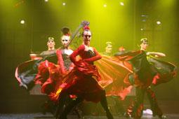 Show entertainment, Charity ball, Riga, Latvia korporatīvais pasākums Melngalvju namā,  korporatīvais pasākums Melngalvju namā,  korporatīvais pasākums Melngalvju namā,  korporatīvais pasākums Melngalvju namā